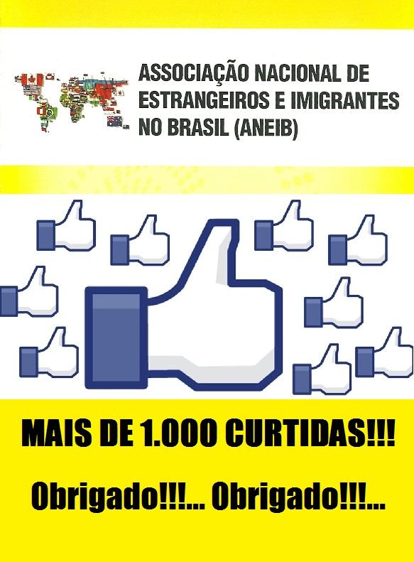 1000 CURTIDAS