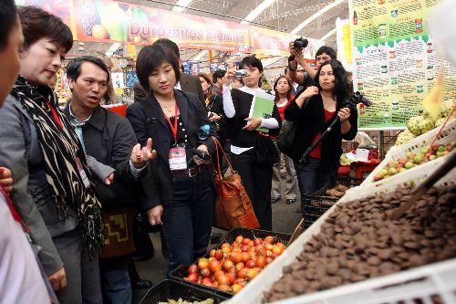 inportadores chinos